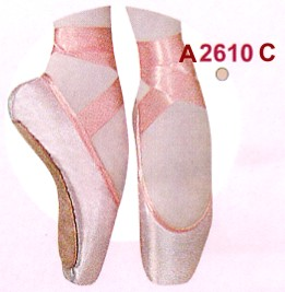 Ballet Point Shoes